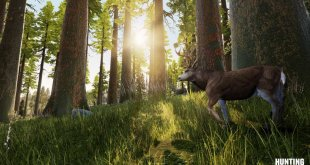 gamelover Hunting Simulator